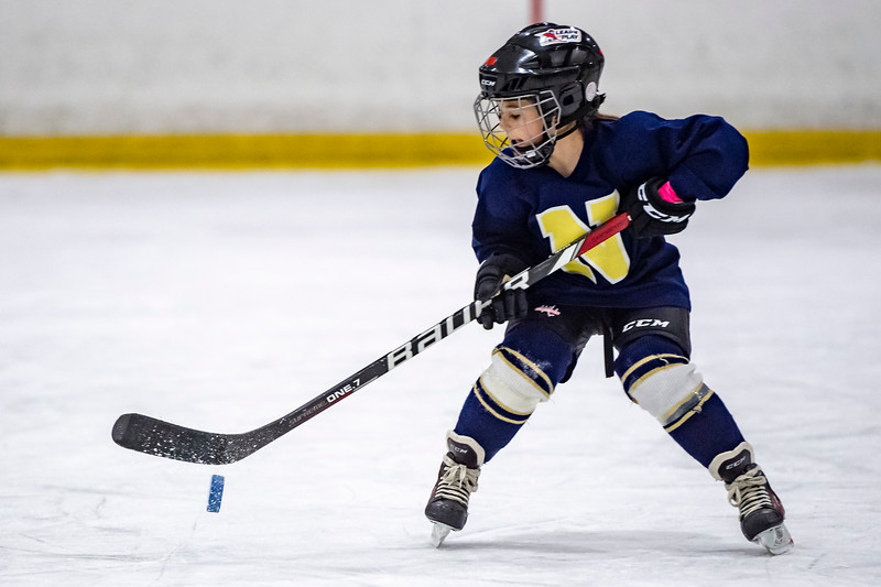 2019-02-04-Ryan-Naughton-Hockey-111.jpg