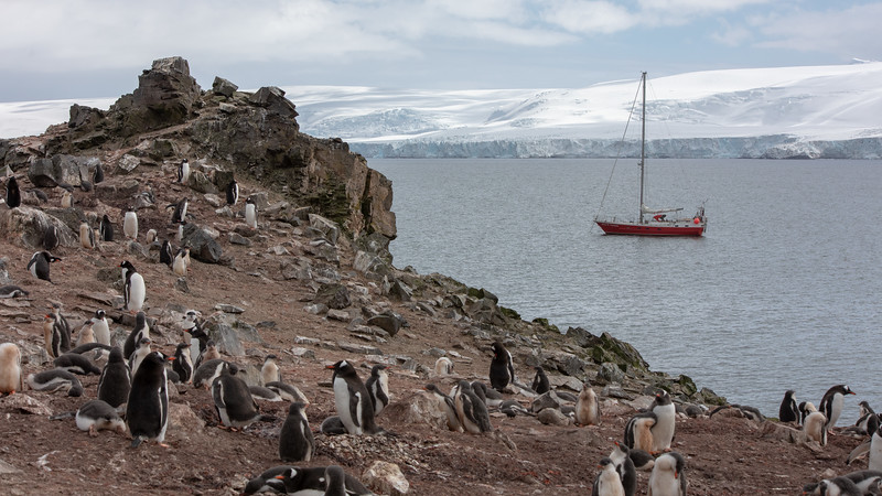 2019_01_Antarktis_01259.jpg