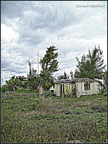 A Different Sort of Housing Crisis  ©2009 FlorieGray