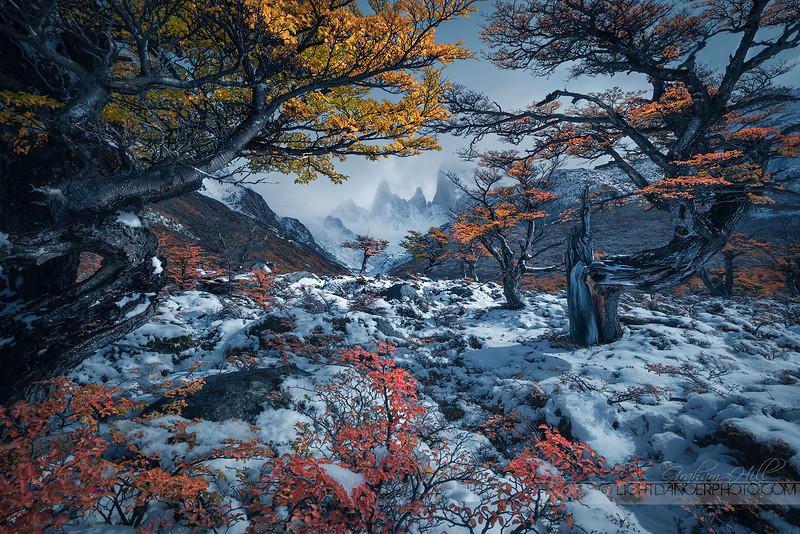 Patagonia - Boulevard of Alpine Dreams