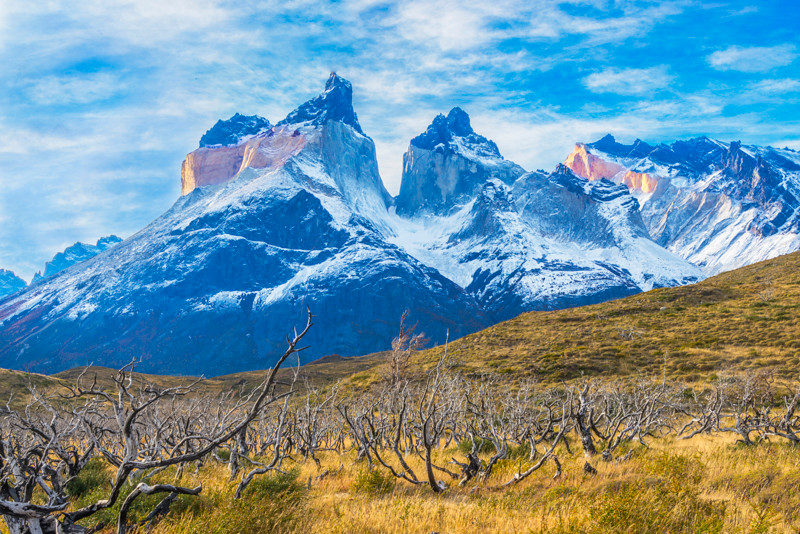 Torres del Paine (23).jpg