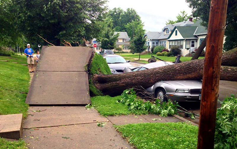 . A sidewalk is lifted up entirely by a fallen tree that also smashed a car in South Minneapolis. (Photo: Dan Sheehan)