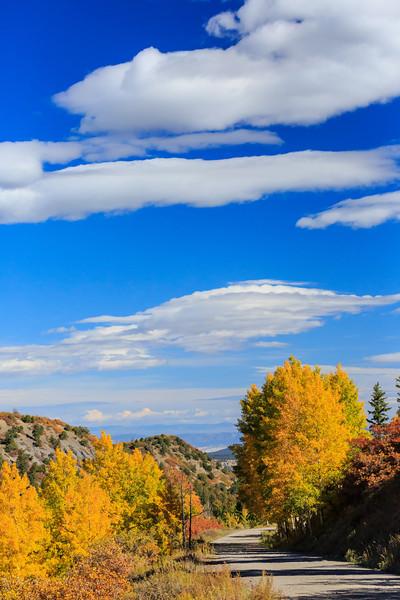 Colorado Color-33.jpg