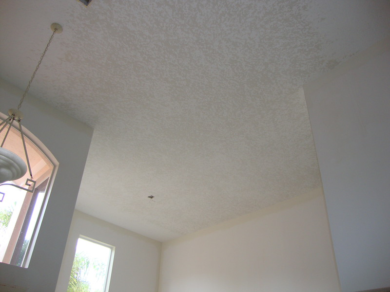 Ceiling Repair After