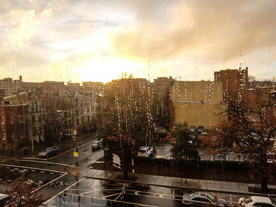 Washington DC - November rain