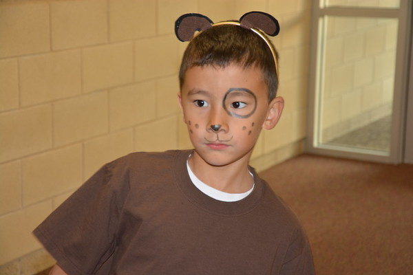 Second Grade Cats & Dogs Play
