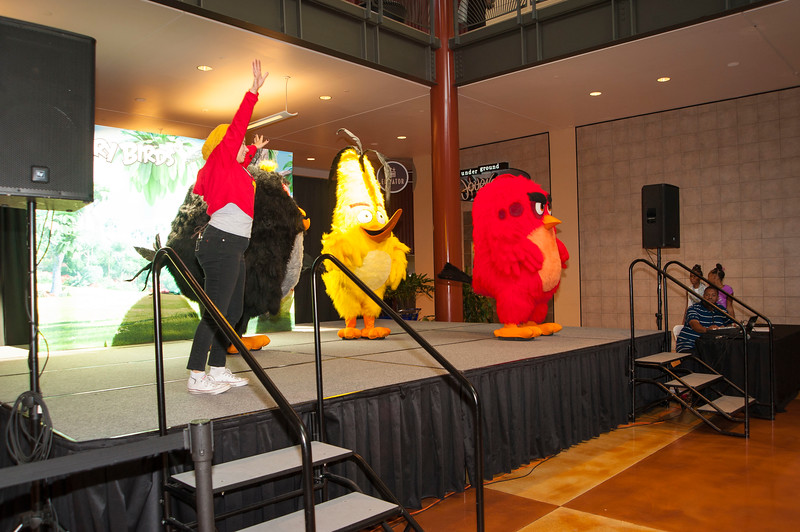 Angry Birds StoneCrest Mall 66.jpg