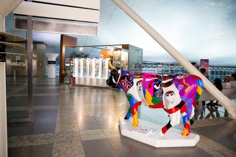 3 Vaca de máscaras_And Santos (1)