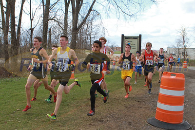 On course photos D2 Boys - 2015 MHSAA LP XC