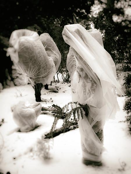 Bridal Shroud