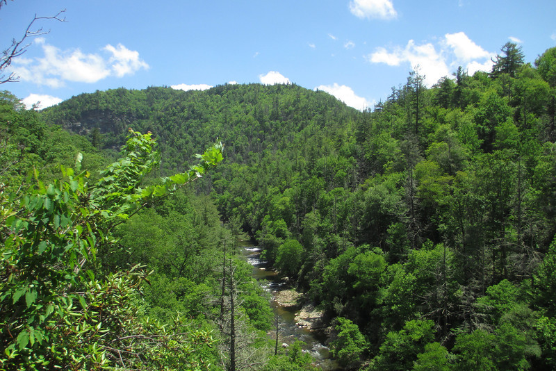 Taking a quick breather on the steep but mercifully short climb from the river at a wonderful beauty spot looking upstream.  The Bynum Bluffs, which would tower above me later in the hike, can just be seen through the trees to the left...