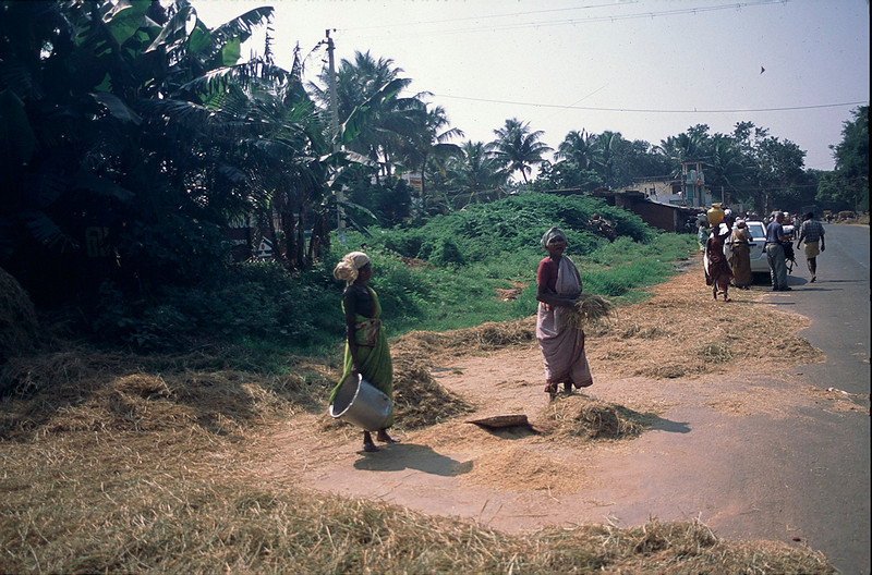 India2_025.jpg