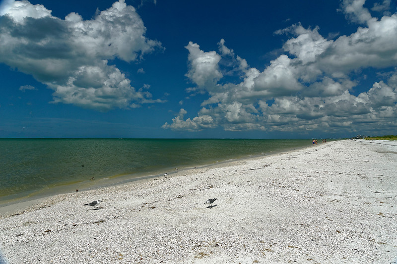 Lover's Key State Park