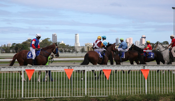 Gold Coast Turf Club Jan 5th 2013