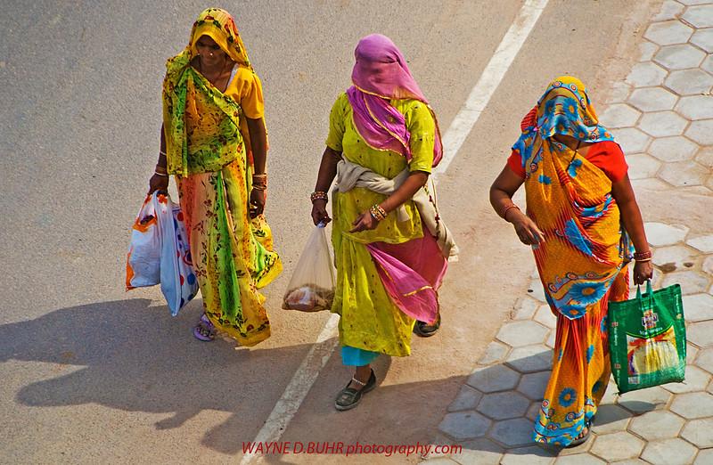 India2010-0205A-07A.jpg