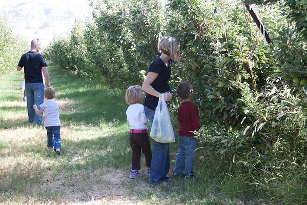 Orchard - Oct 10