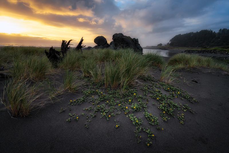 Turtle Rock Sunset.jpg