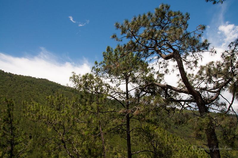 Bhutan-Punakha-8121.jpg