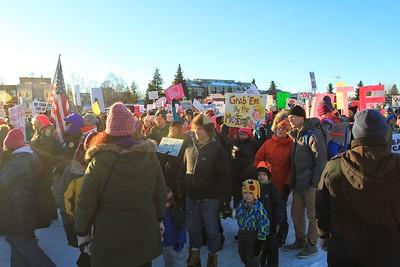 Anchorage Women's March 2.0