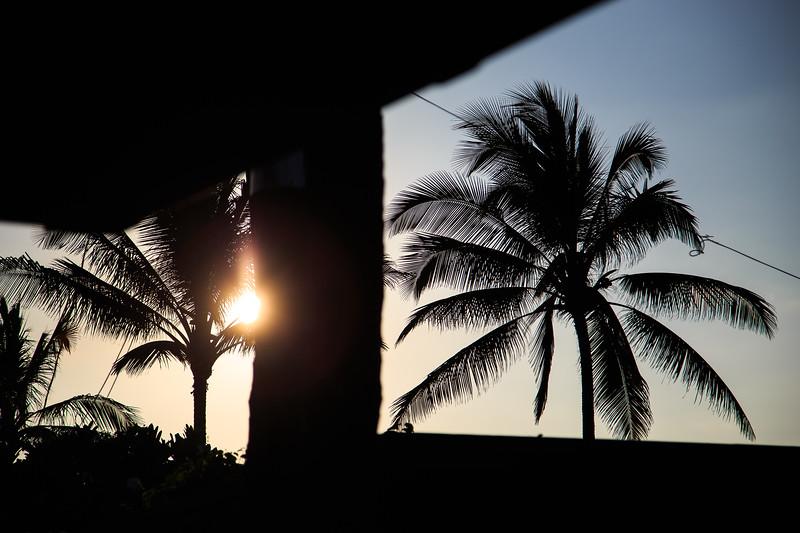 Hawaii-North Shore 2017-8905.jpg