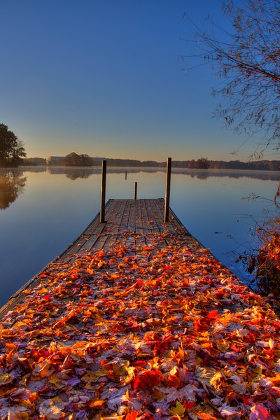 WingfootLake-Nov4-fall-Beechnut-Photos-rjduff.jpg
