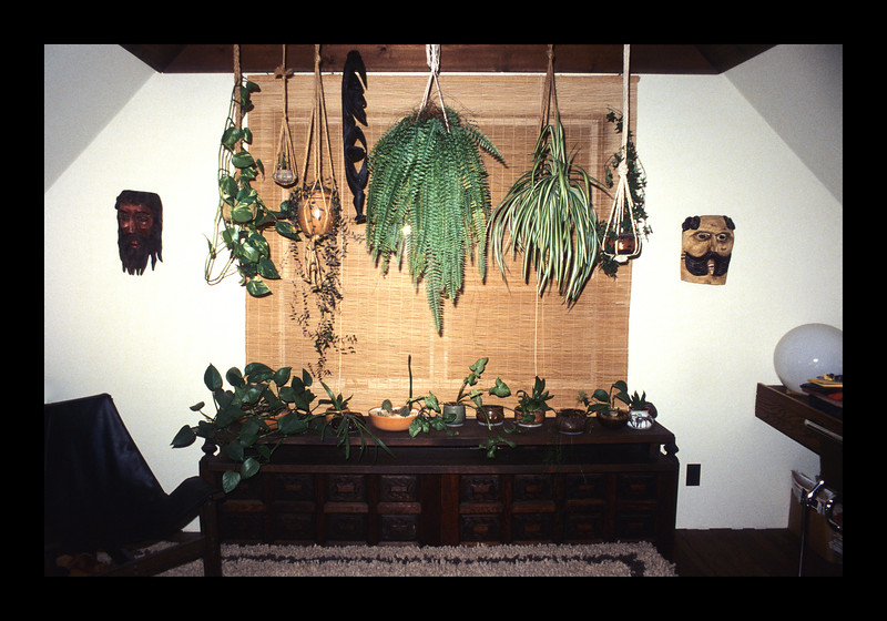 37. Master Bedroom with hanging plants and exposed wooden rafters.jpg