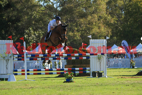 2016 12 10 Eventing in the Park Grand Prix 20 Harry Meade Manely Red