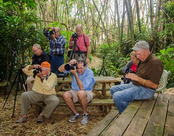 Nude Photography, Unbelievable Acres, Florida - Nov 2014