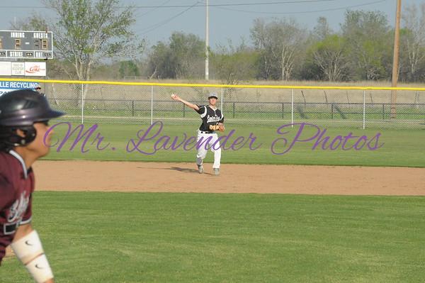 2013 High School Baseball Season