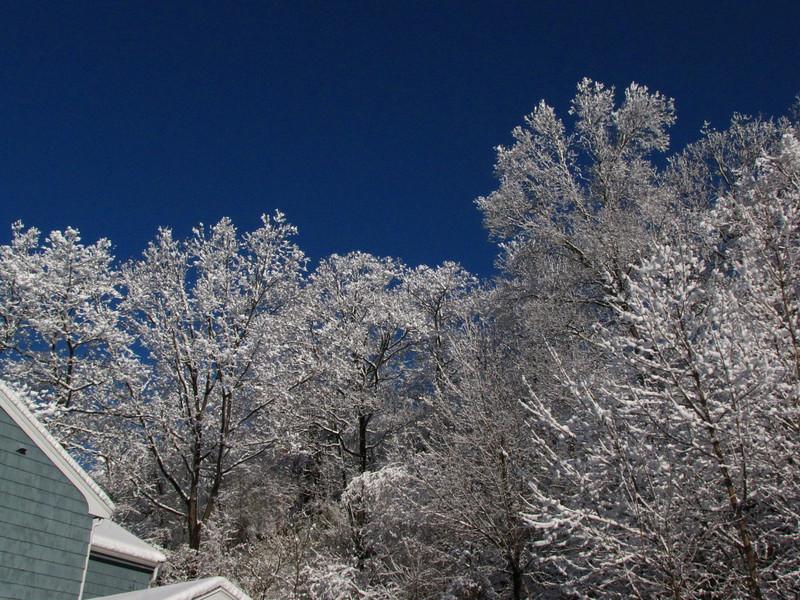 February 17, 2010 (Lynn, MA)