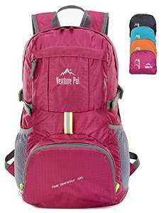 Venture Pal day hiking pack