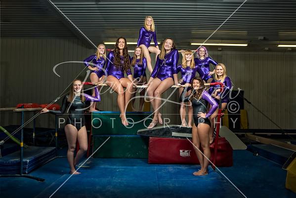 Gymnastics Team 2018
