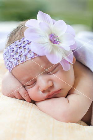 Alaina • Newborn Session