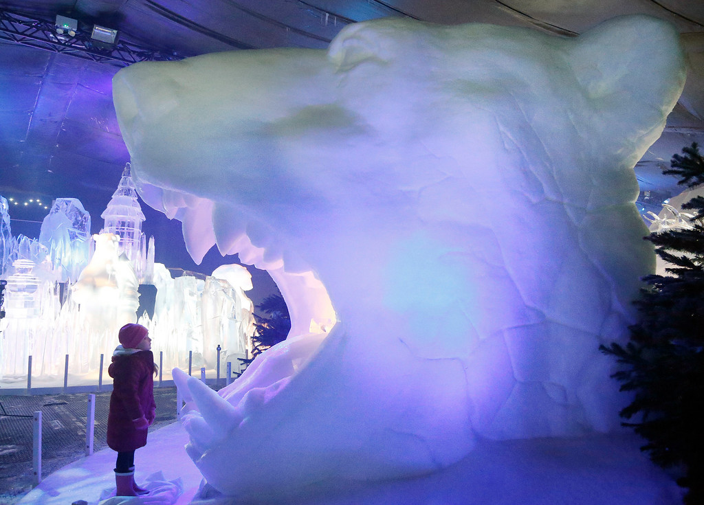 . 4 year old Scarlett looks into the mouth of a polar bear head ice sculpture at the launch of Hyde Park Winter Wonderland\'s Magical Ice Kingdom in London, Thursday, Nov. 17, 2016. This year\'s Winter Wonderland starts on Nov. 18,2016 and until Jan.  2, 2017. (AP Photo/Frank Augstein)