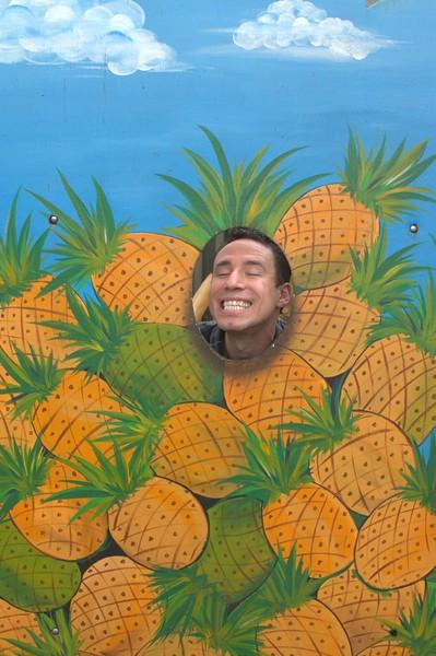 Hawaii_0026 (Large).jpg