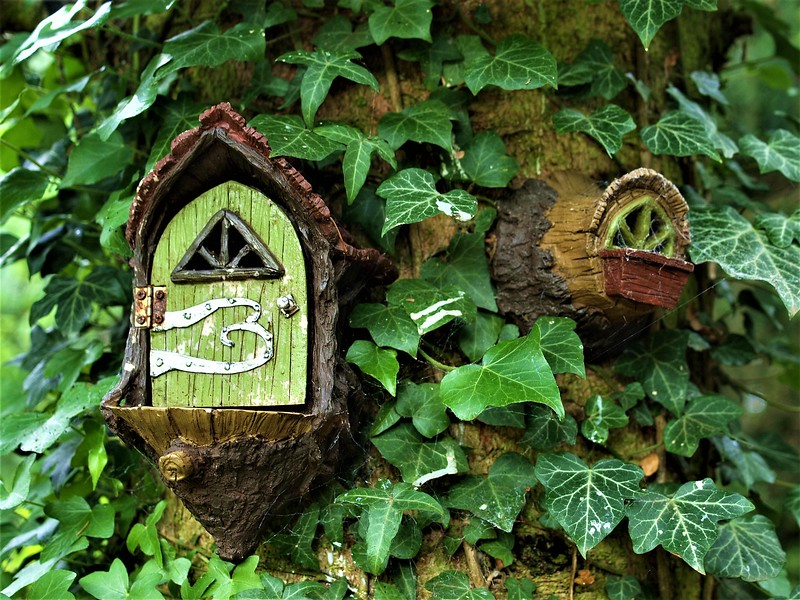 Terra Nova Fairy Garden in Limerick
