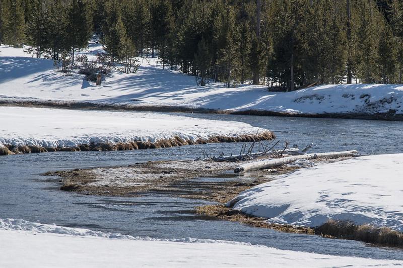 Yellowstone2017 (823 of 963).jpg
