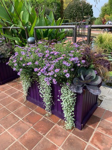 Chicago Botanic Garden 118.jpg