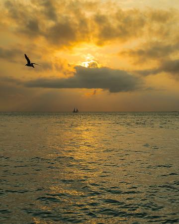 Florida ~ Florida Keys