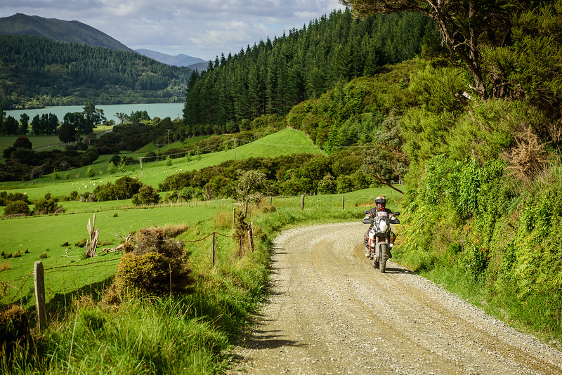 2019 KTM New Zealand Adventure Rallye (1159).jpg