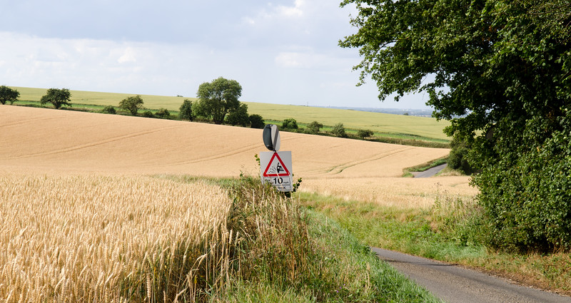 South Cambridgeshire country lane