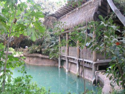 2005 - Sept (Santa Ana Zoo Picnic)