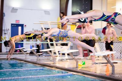 Quaker Valley Swim Team