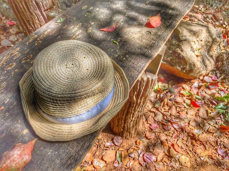 The Hat_6.jpeg