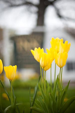 Freeport Spring