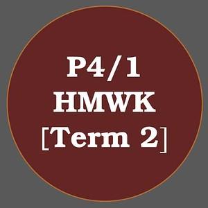 P4/1 HMWK T2