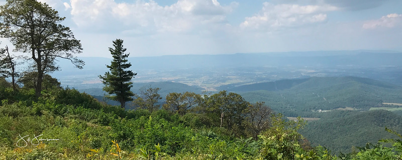 at hike-8968.jpg