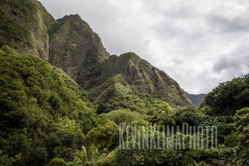 Maui2016-149.jpg