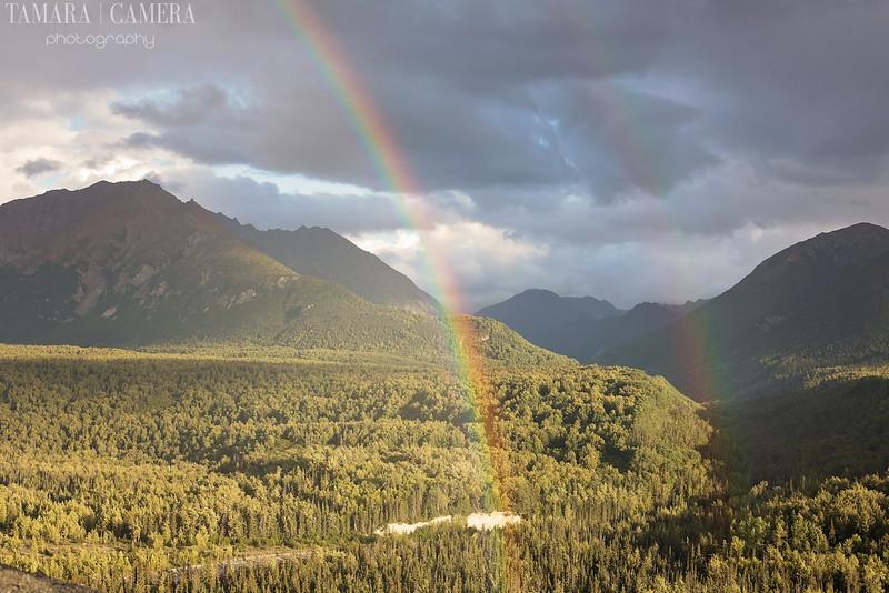 Rainbows3-8.jpg