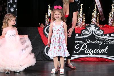 Little Miss Awards